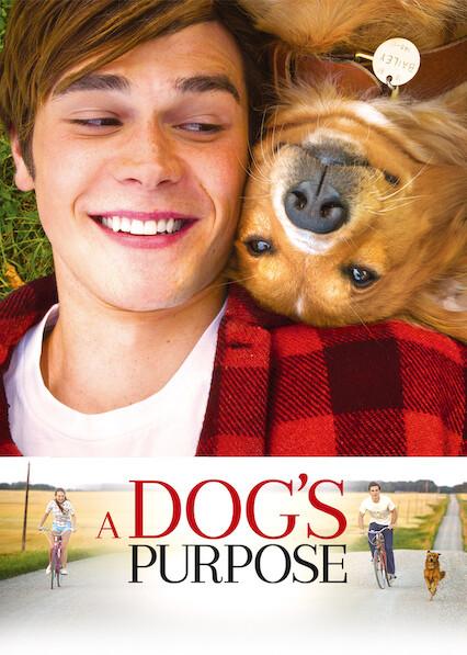 A Dog's Purpose on Netflix UK